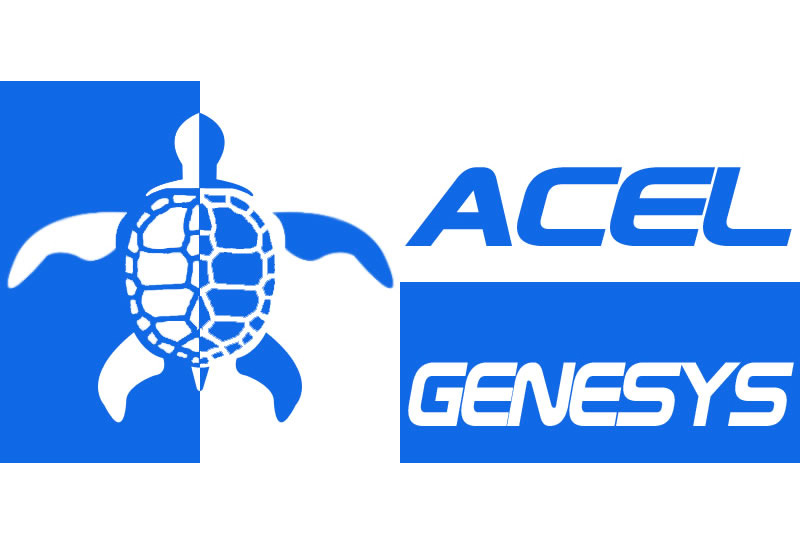 Aegex Announces Acel Genesys as New Reseller in France